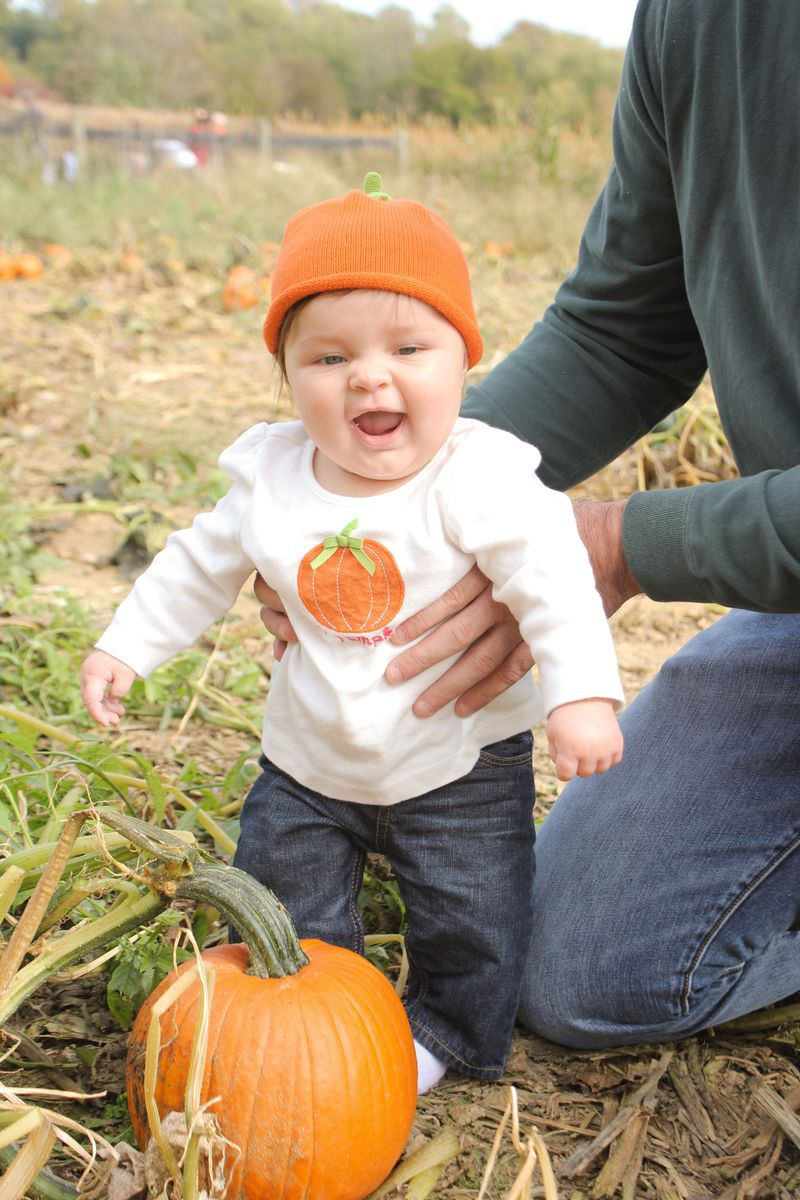 Pumpkin patch 029